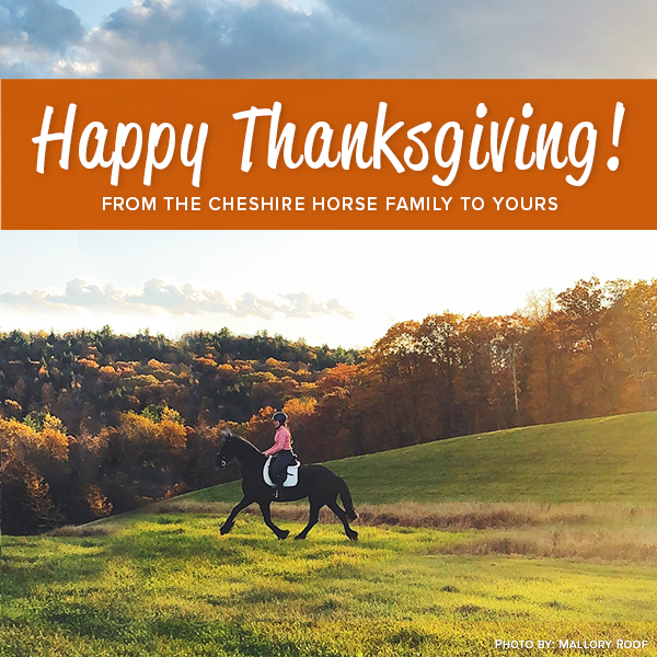 Happy Thanksgiving from The Cheshire Horse family to yours
