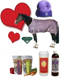Show Your Horse You Care this Valentine's Day