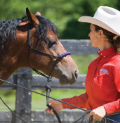 2014-02-natural-horsemanship