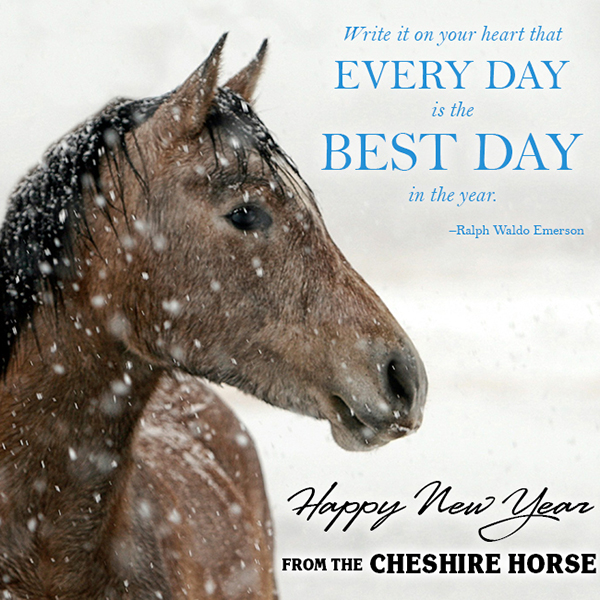 Happy New Year The Cheshire Horse Blog