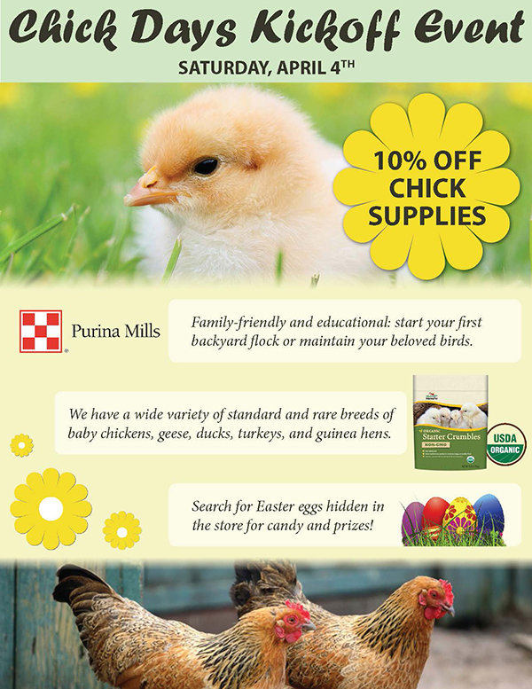Chick Days Kickoff Poster-600