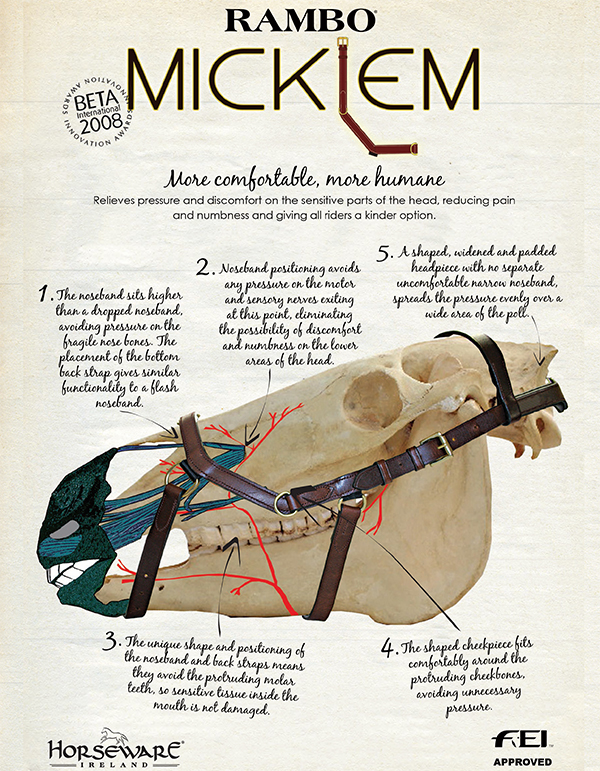2015-10-Micklem-Overview
