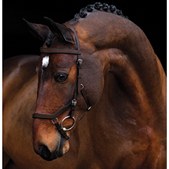Micklem Competition Bridle, $199.95