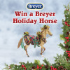2016-12-12-days-breyer