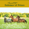 Summer Enter to Win Ariat-FB-crop