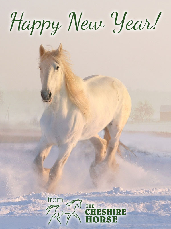 happy new year from the cheshire horse